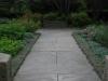 Dwarf Sage And Scented Geraniums Walk Way September