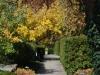 Main Garden Walk  Fall