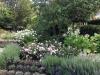 Fragrance-Garden
