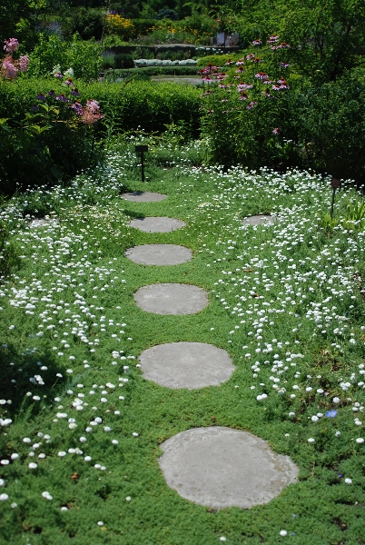 Medicinal Garden Western Reserve Herb Society