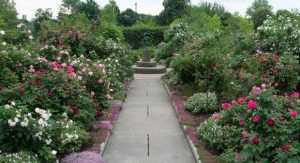 Cleveland Herb Garden History
